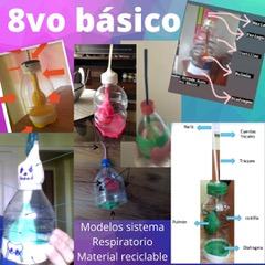 Modelos Sistema respiratorio 8° básico